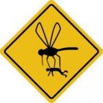 PHOTO mosquito hazard