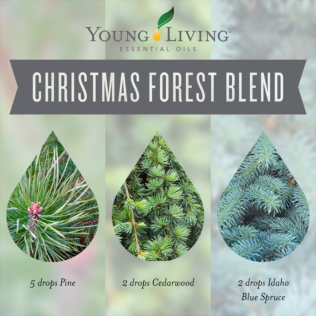 the essentials christmas diffuser blend