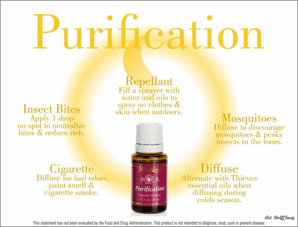 YL PHOTO Purification uses